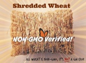 Non-GMO Project - non-gmo labelled wheat, all wheat is GMO FREE